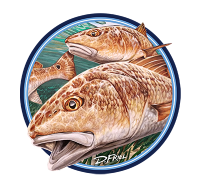 Tekeze Charters-Redfish-D Friel